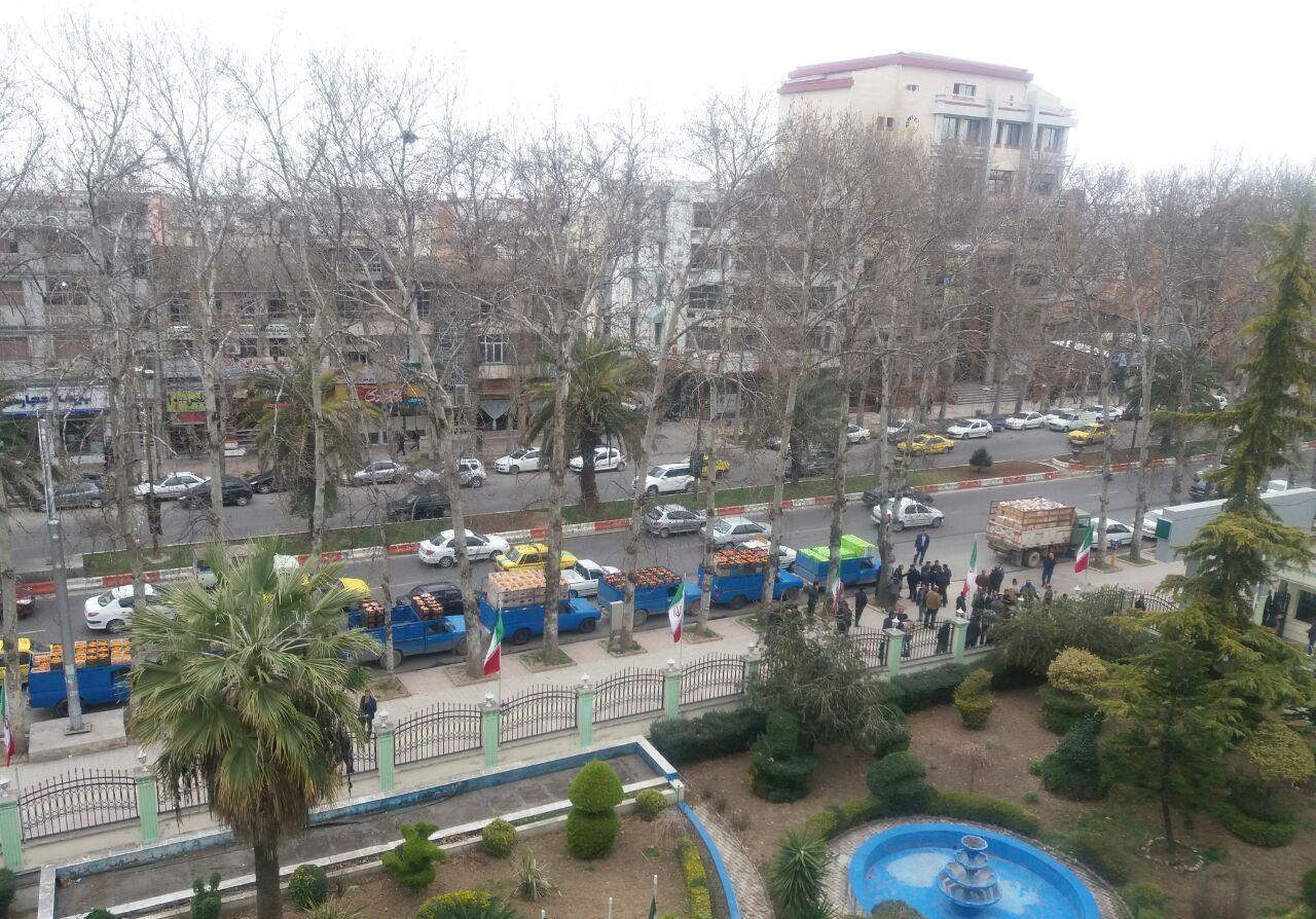 در اعتراض به واردات پرتقال رقم خورد / تجمع باغداران با نیسانهای پُر از پرتقال مقابل جهاد کشاورزی مازندران
