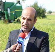 مدیر جهاد کشاورزی ساری خبر داد:احیا صنعت پرورش کرم ابریشم نیازمند همکاری مسئولان است