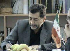 حسینی نژاد: مهمترین هدف جنگ نرم دشمن گرفتن امید و اعتمادبهنفس ملت ایران است